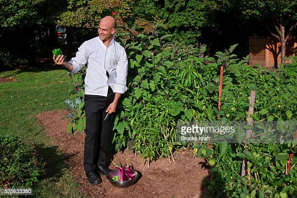 Assistant White House Chef Sam Kass displays a green pepper harvested from the Kitchen Garden located on the South Lawn of the White House Since...