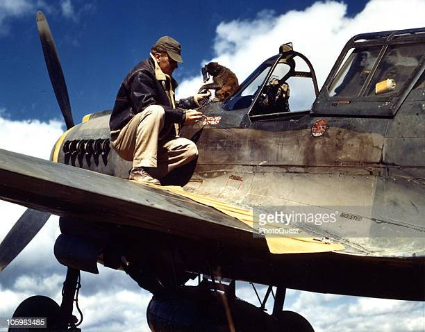 Assisted by his monkey Sergeant Elmer J Pence of the 26th Fighter Squadron 51st Fighter Group adds another victory marking on Major Edward...
