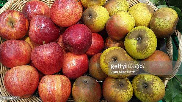 assorted apples in a wicker basket - jean marc payet foto e immagini stock