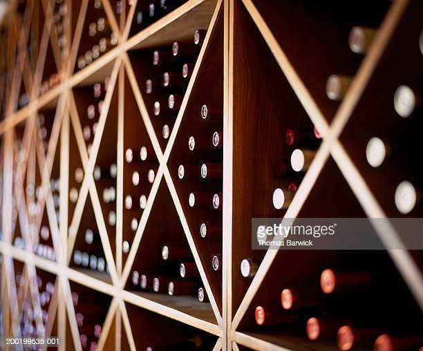 Assorted bottles of wine in wine rack