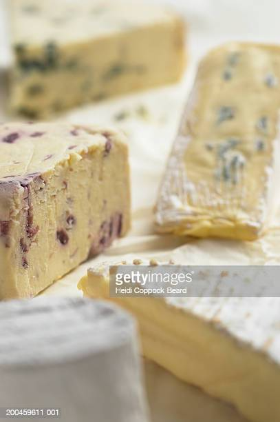 assorted cheeses, close-up - heidi coppock beard bildbanksfoton och bilder