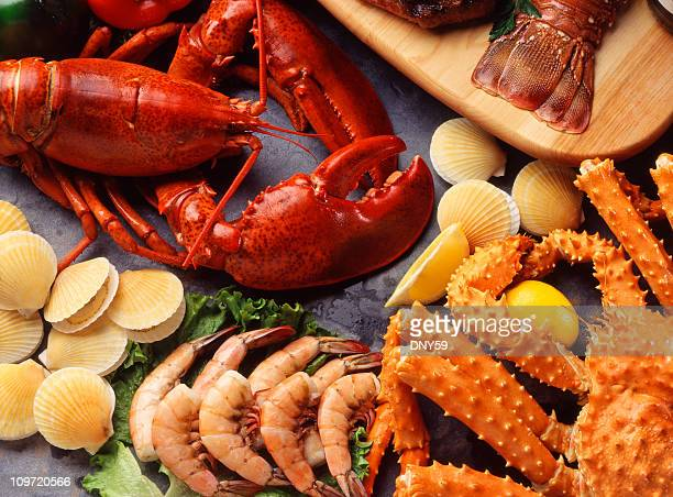 assorted collection of shellfish - seafood stock pictures, royalty-free photos & images