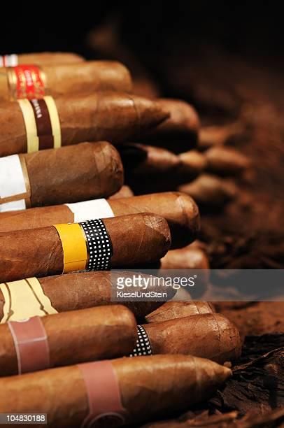 Assorted Cuban Cigars