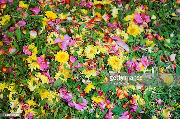 Assorted flowers for sale in market, Mysore, Karnataka