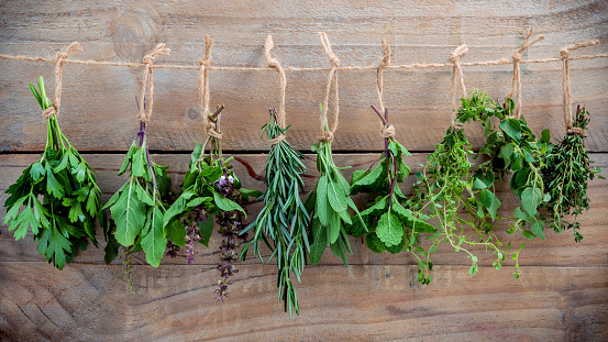 Assorted hanging herbs ,parsley ,oregano,mint,sage,rosemary,sweet basil,holy basil,  and thyme for seasoning concept on rustic old wooden background. 670762802