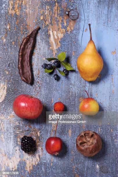 assorted old fruits (seen from above) - acerola imagens e fotografias de stock