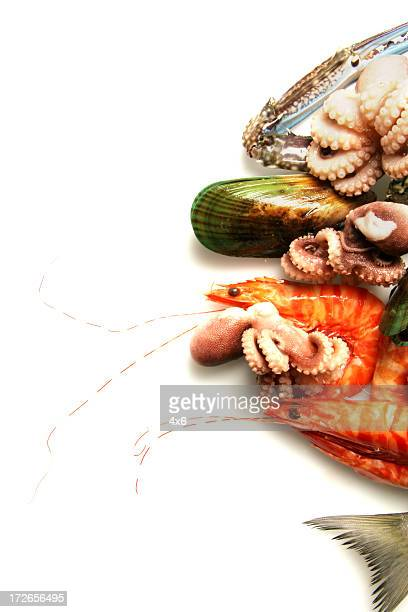 Un assortiment de fruits de mer