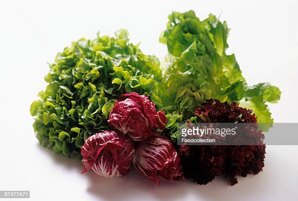 Assorted Types of Lettuce