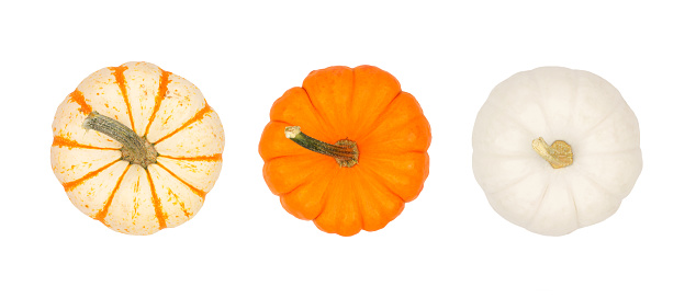 Assortment of autumn pumpkins, top view isolated on white 1045669134