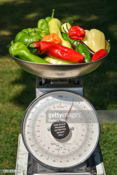 assortment of colorful peppers freshly harvested from the garden weighed and ready for market - anaheim california stock pictures, royalty-free photos & images