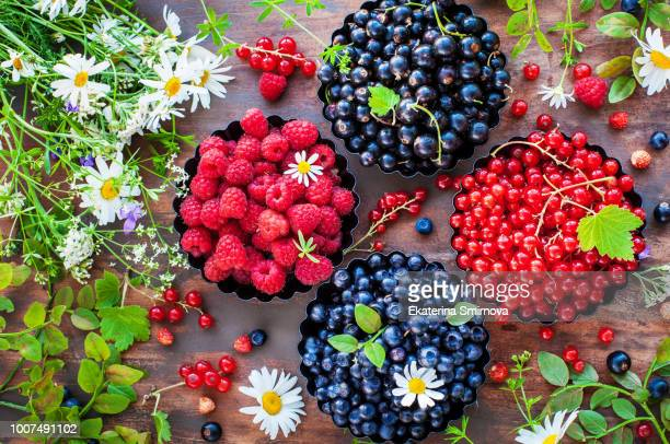 assortment of fresh ripe summer berries - black and red currant, blueberry, raspberry, top view - berry stock pictures, royalty-free photos & images