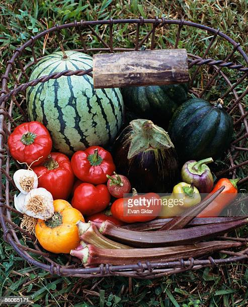 Assortment of fruit and vegetables in basket