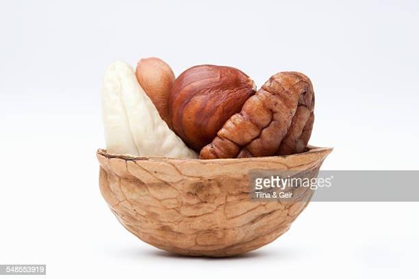 Assortment of nuts in walnut shell