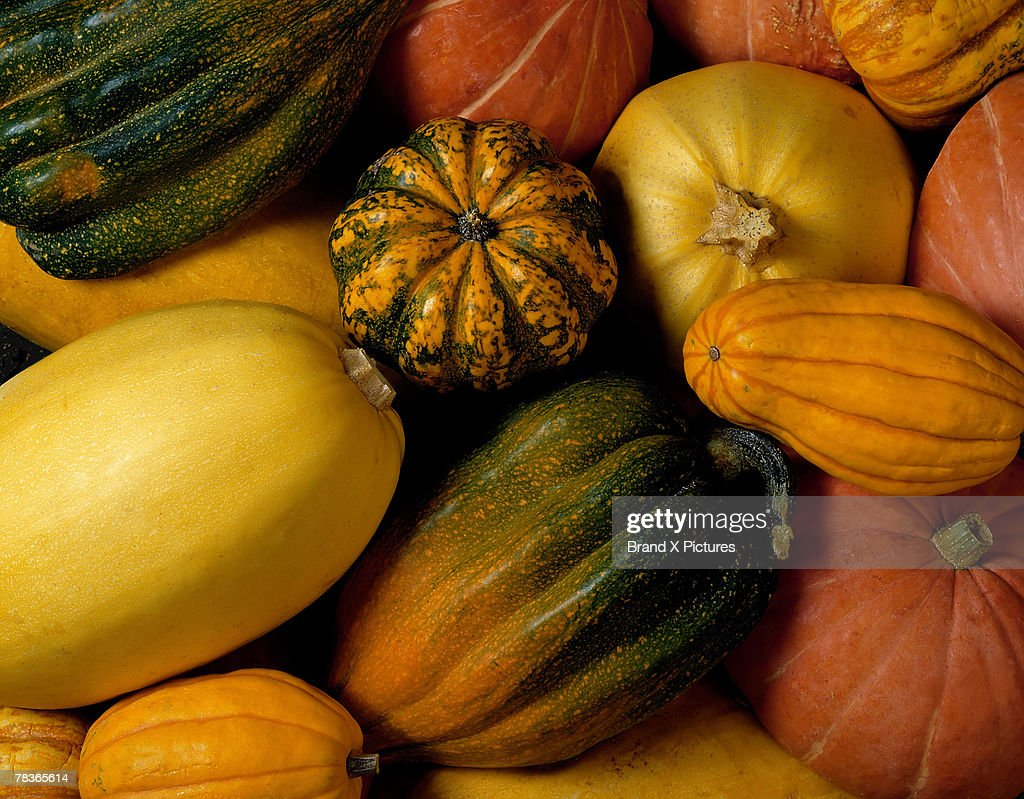 Assortment of squash : Photo