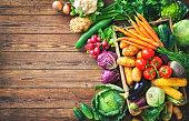Assortment of the fresh vegetables