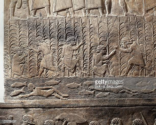 Assyrian civilization 7th century bC Scene of agricultural work and swimmers in a river Relief from Royal Palaces of Nineveh circa 645 bC