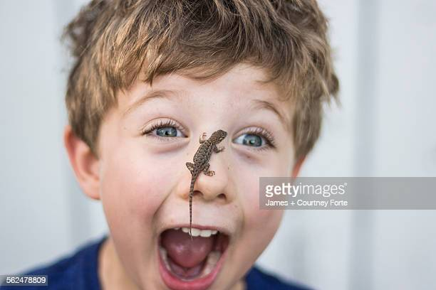 Astonished toddler boy with Sagebrush lizard on nose in Chico, California.