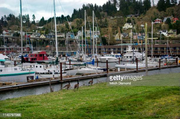 Astoria Oregon Harbor Area