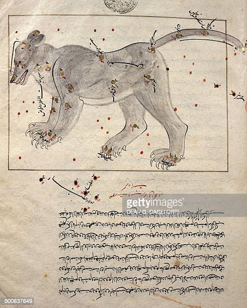 Astrological figure Ursa Major from the Treaty on the Constellations by the Arabic astronomer Abd alRahman alSufi Persian translation Manuscript...