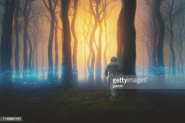 astronaut walking in mysterious forest at night - fantasy stock pictures, royalty-free photos & images