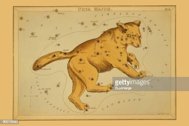 Astronomical chart showing a bear forming the constellation