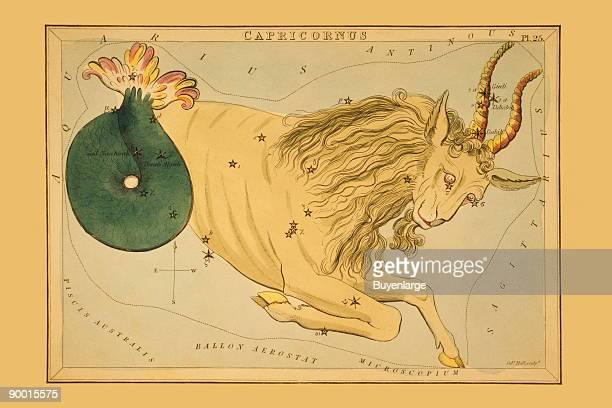 Astronomical chart showing a goat forming the constellation