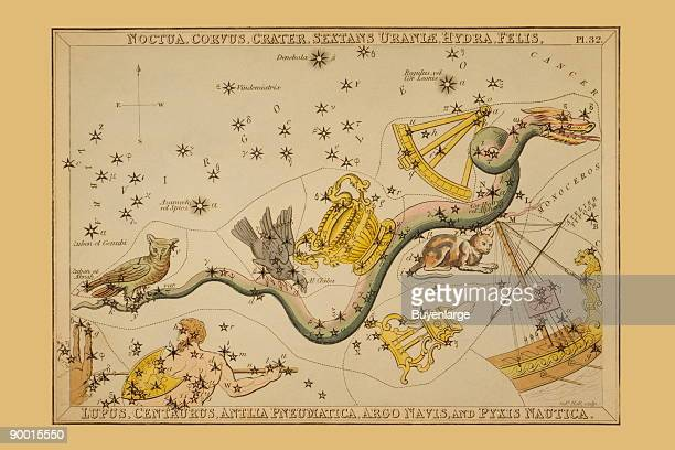 Astronomical chart showing an owl raven ornate bowl sextant snake cat wolf centaur air pump and a ship forming the constellations