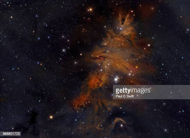 astrophotography cone nebula, christmas tree clust - astrophysics stock pictures, royalty-free photos & images