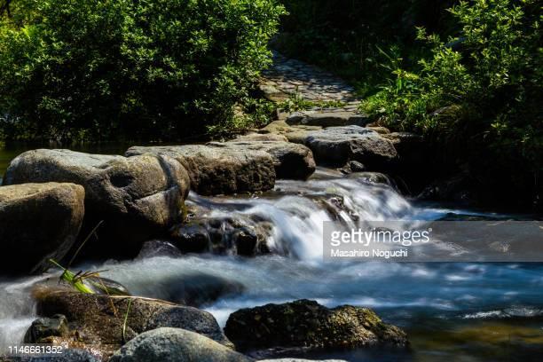 asuka river jumping stones, asuka, nara, japan, downstream view - asuka stock pictures, royalty-free photos & images