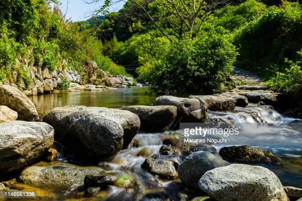 asuka river jumping stones, asuka, nara, japan - asuka stock pictures, royalty-free photos & images