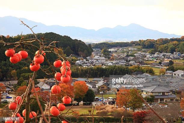 asuka village, nara prefecture - asuka stock pictures, royalty-free photos & images