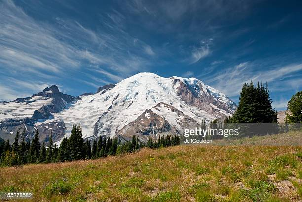 Mount Rainier and Alpine Meadow
