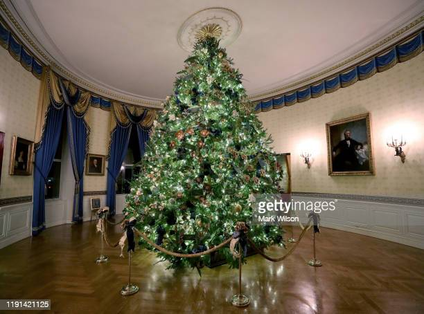 At 18 feet tall the official White House Christmas is blossoming with handmade paper flowers that pays homage to the distinctive floral emblem of...