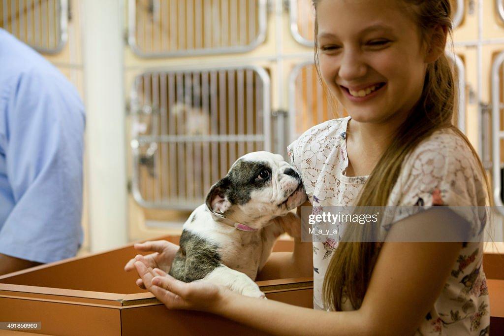 At animal adoption centre : Stock Photo