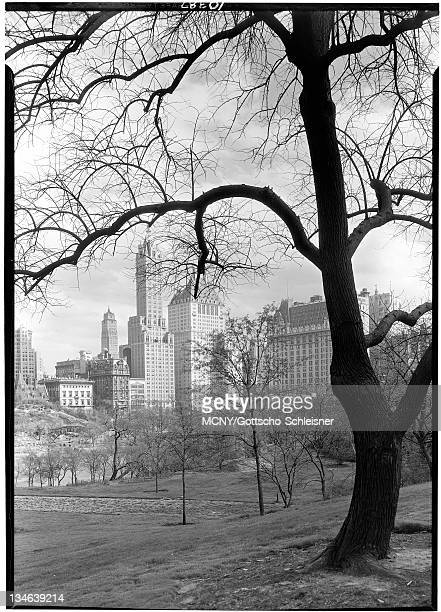 At Fifth Avenue and Central Park South looking southeast from Central Park, looking through the trees at the Ritz Tower, the Sherry-Netherlander...