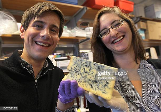 At Harvard University in Cambridge Rachel Dutton right and Benjamin Wolfe two biologists who are working on isolating and understanding the microbes...