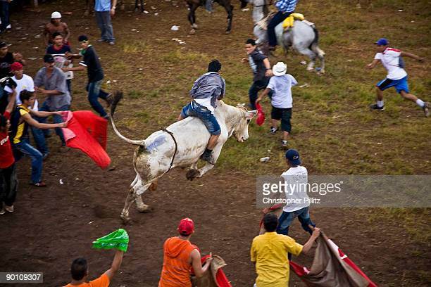 At 'La Barrera' the very rudimentary bull ring in Juigalpa town the public and especially the testosteronedriven young men jump into the ring to...