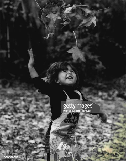 At least somebody is pleased with coming of Winter Rebecca Stevens 3yrs old of Seaforth plays amongst the fallen leaves Liquid Ambar tree at her hone...