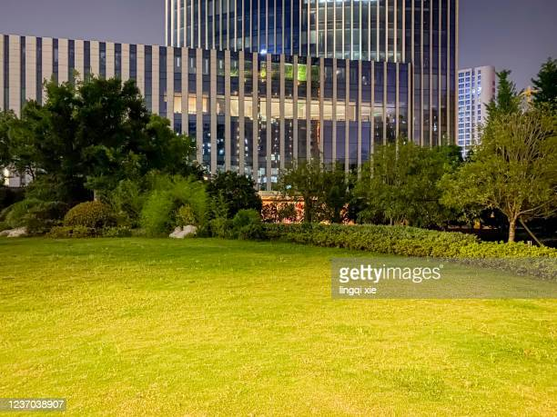 at night, the lighting effect of the facade of modern building and the green space in front of the building - front view ストックフォトと画像