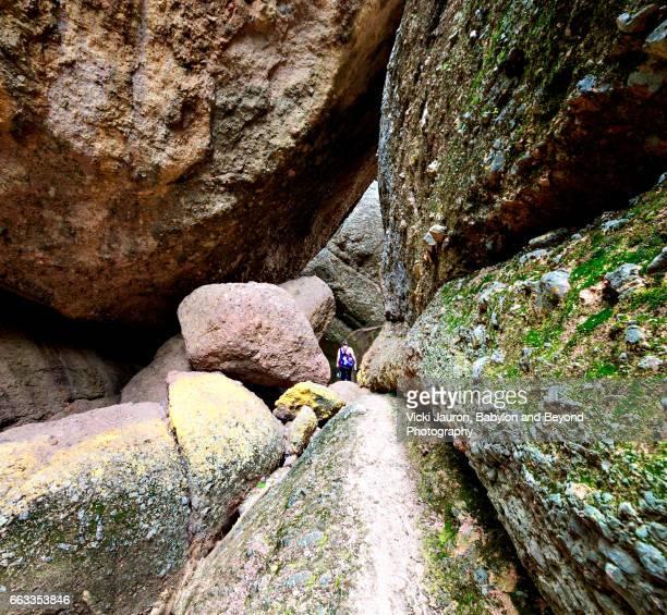 at the entrance to balconies caves at pinnacles national park - california condor - fotografias e filmes do acervo