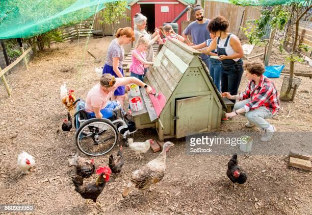 DIY at the Farm
