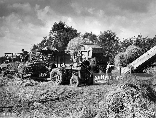 At the first sign of the sun farmers and their men many on extended leave from the Forces went into the fields in an effort to save the harvest A...