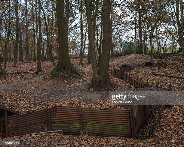At the Great War site of Sanctuary Wood and its trenches near Hill 62, Flanders, Belgium You have to imagine this without the corrugated iron - used...