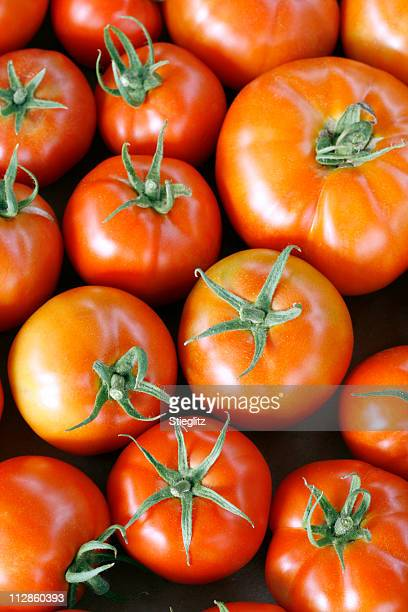 at the market: tomatoes