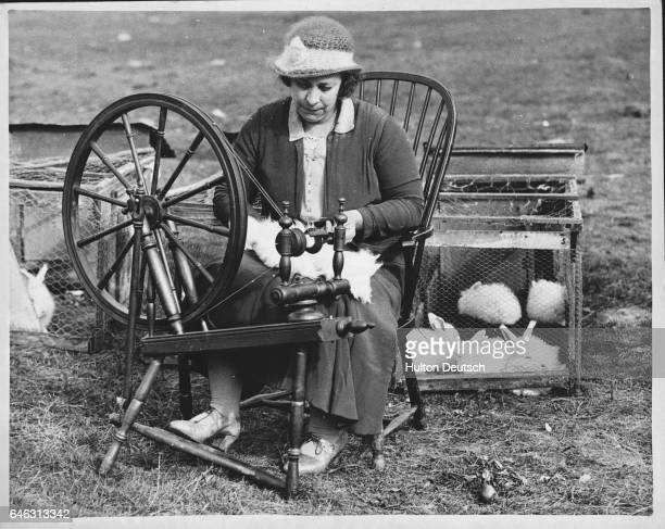 At the Northwoods angora rabbit farm Mrs Blackmore spins wool for a sleeveless handknitted coat to be made at the request of Queen Mary It is hoped...