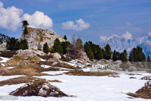 at the sellajoch or sella pass, passo sella, dolomites, italy - {{asset.href}} stock pictures, royalty-free photos & images