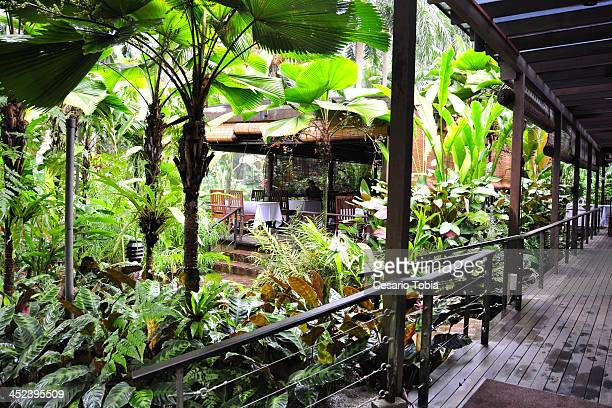 CONTENT] At the Singapore Botanic Garden
