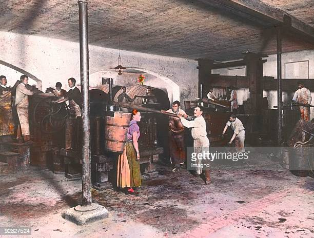 At the squeezers in the wine cellar Lower Austria Handcolored lantern slide Around 1915