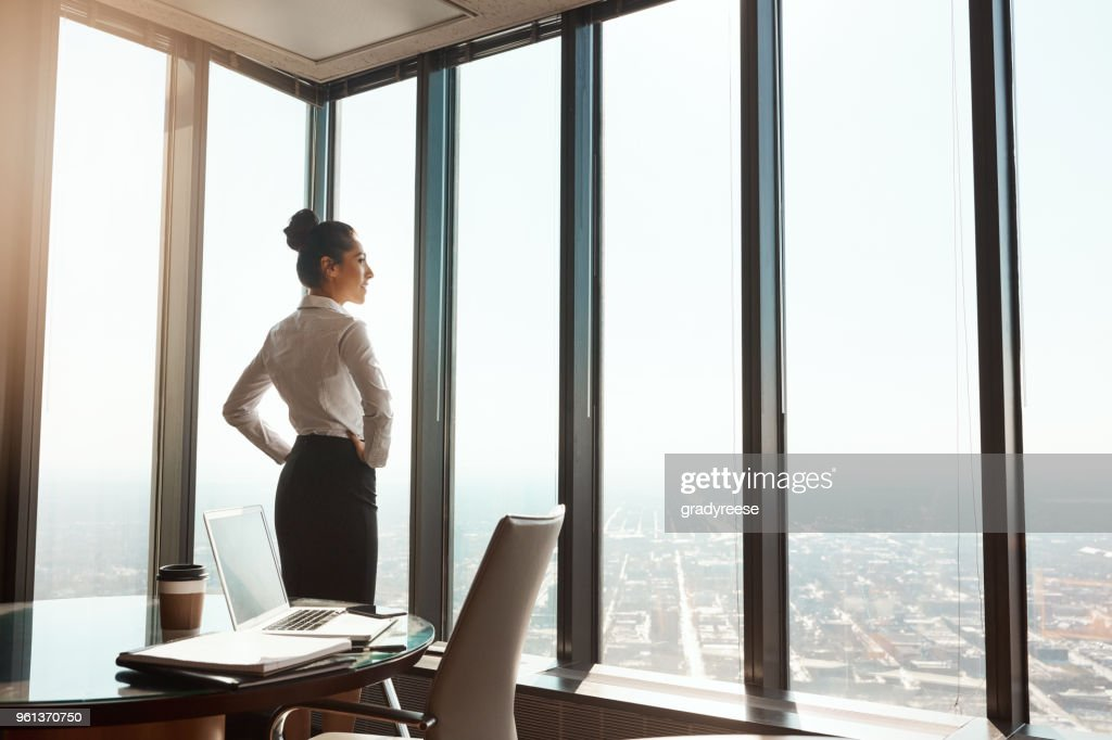 At the top of the business world : Stock Photo