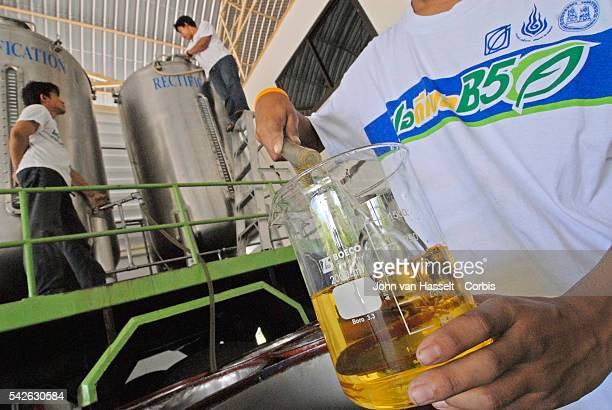 At this plant outside of Chiang Mai used cooking oil and palm oil are processed to produce biodiesel The raw material cooking oil or palm oil goes...